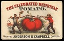 Anderson & Campbell / The Celebrated Beefstake Tomato
