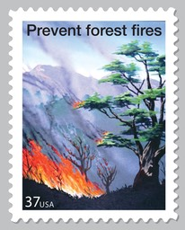 Prevent Forest Fires