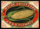 J.P. & D. Plummer / Maine Sweet Corn