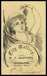M.T. Marymee / City Gallery