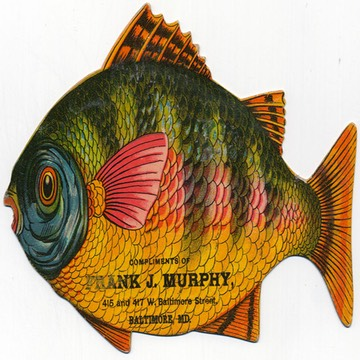 MurphyFish(color)150