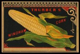 Thurber's Windham Corn