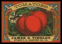 James G. Tinsley / Tomatoes