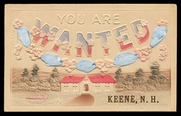 """You Are Wanted"" / Keene, NH"